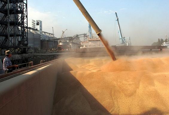 Кубанские аграрии смогут продавать зерно на бирже