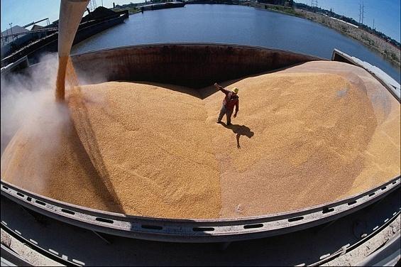 Экспорт зерна из Российской Федерации летом вырос на79%
