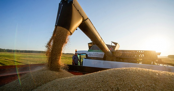 КНР захотел увеличить поставки русского зерна