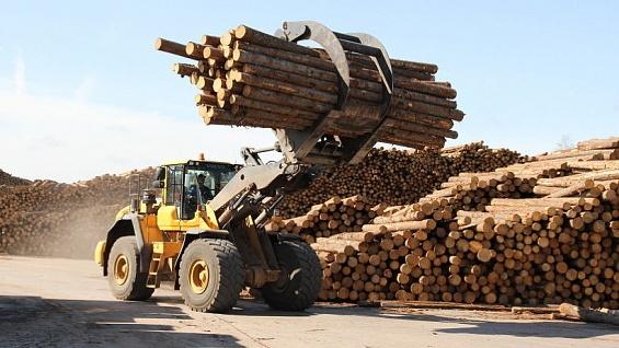 Альфа-Банк финансирует создание крупнейшего в РФ лесоперерабатывающего производства набазеГК «УЛК»